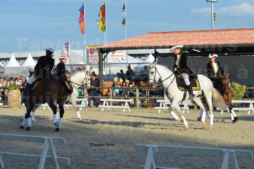 """Carrousel de cavalières Equitation de travail lors du salon """"Equitaine"""" à Bordeaux en 2014 - 52"""