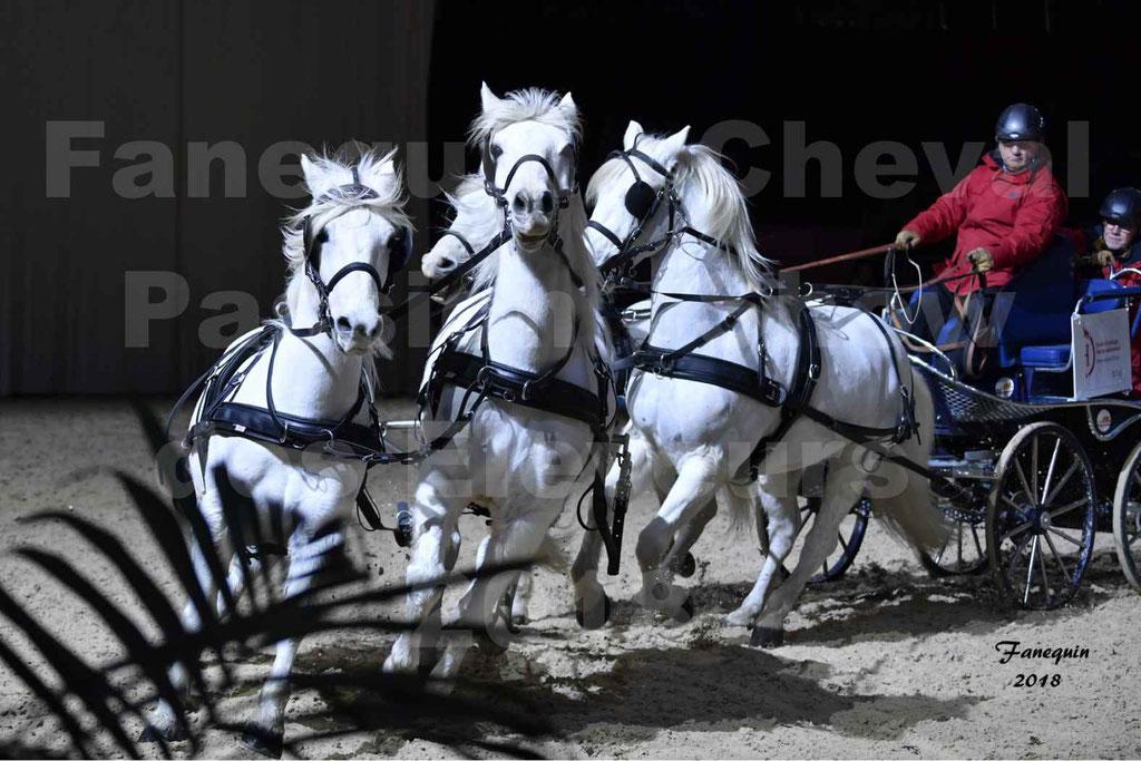 Cheval passion 2018 - Show des élevages - Chevaux CAMARGUE - attelés