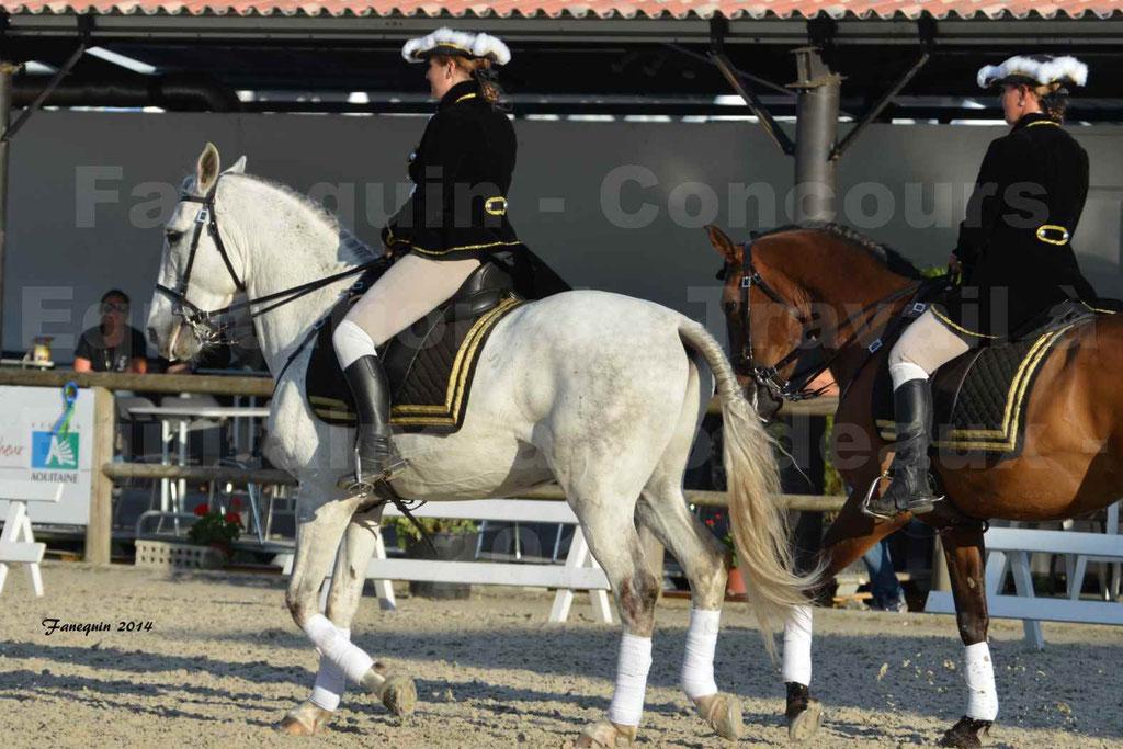 """Carrousel de cavalières Equitation de travail lors du salon """"Equitaine"""" à Bordeaux en 2014 - 64"""