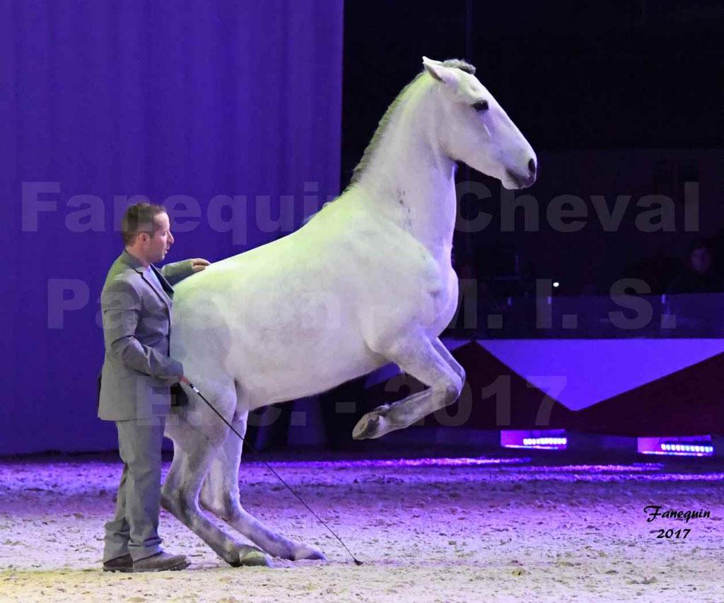 Cheval Passion 2017 - M. I. S. E. C. - Ludovic LONGO & 1 cheval en liberté