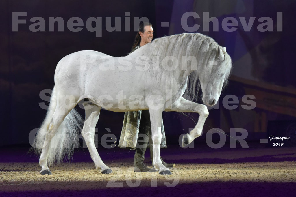 Cheval Passion 2019 - Spectacle Les CRINIÈRES d'OR - Frédéric PIGNON & cheval Ibérique gris en liberté