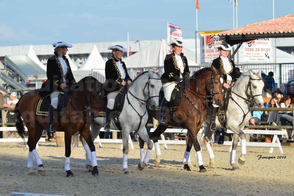 """Carrousel de cavalières Equitation de travail lors du salon """"Equitaine"""" à Bordeaux en 2014 - 65"""