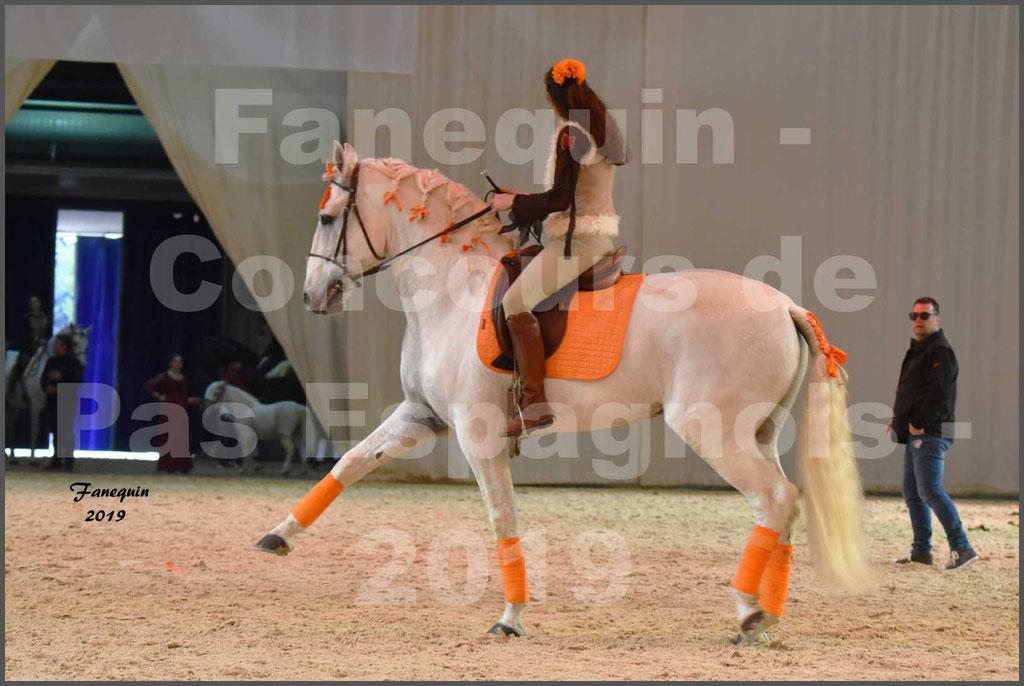 """Cheval Passion 2019 - Concours de Pas Espagnol - Étalon """"ZIDANE"""" - 52"""