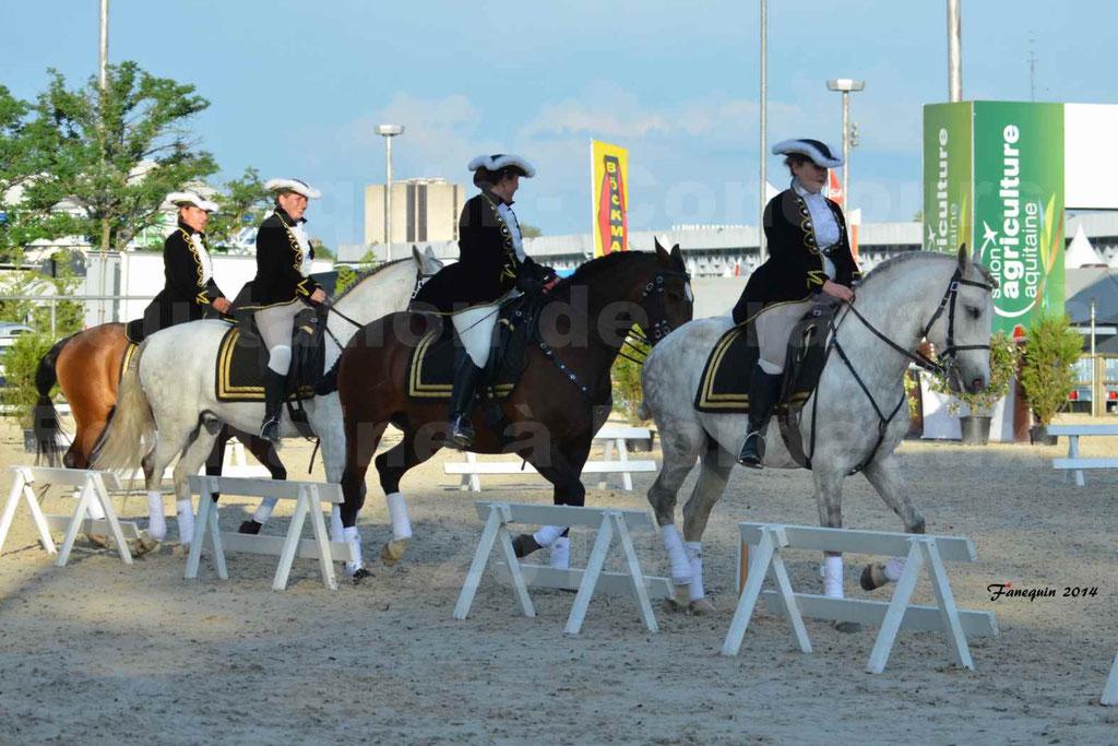 """Carrousel de cavalières Equitation de travail lors du salon """"Equitaine"""" à Bordeaux en 2014 - 60"""