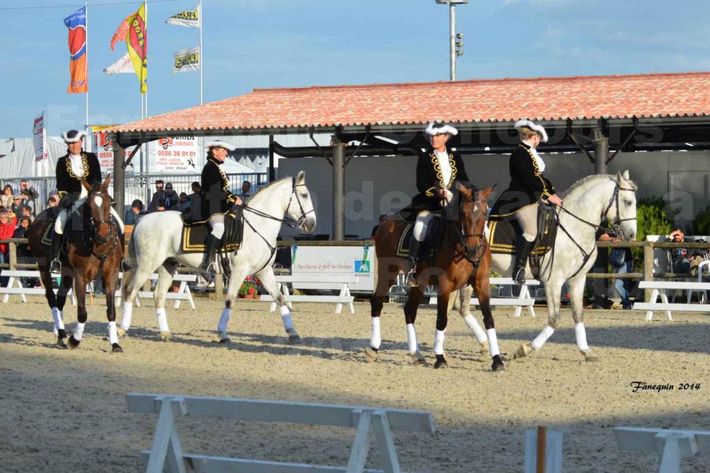 """Carrousel de cavalières Equitation de travail lors du salon """"Equitaine"""" à Bordeaux en 2014 - 05"""