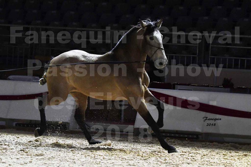 Cheval passion 2018 - Show des éleveurs - Chevaux LUSITANIEN