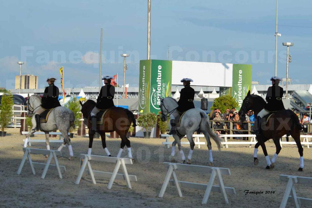 """Carrousel de cavalières Equitation de travail lors du salon """"Equitaine"""" à Bordeaux en 2014 - 16"""