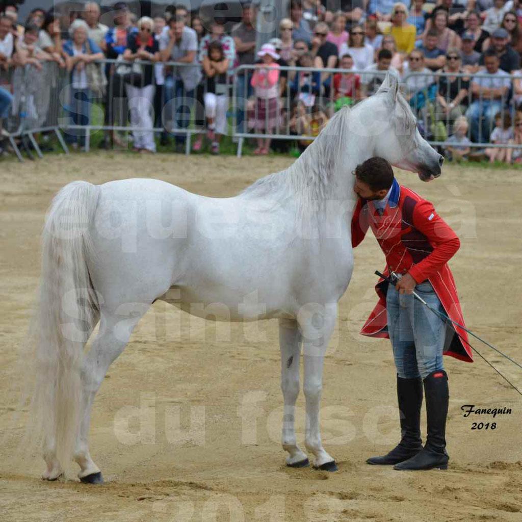 SANTI SERRA avec 1 cheval en liberté