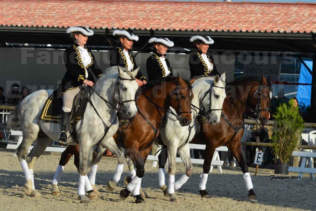 """Carrousel de cavalières Equitation de travail lors du salon """"Equitaine"""" à Bordeaux en 2014 - 02"""