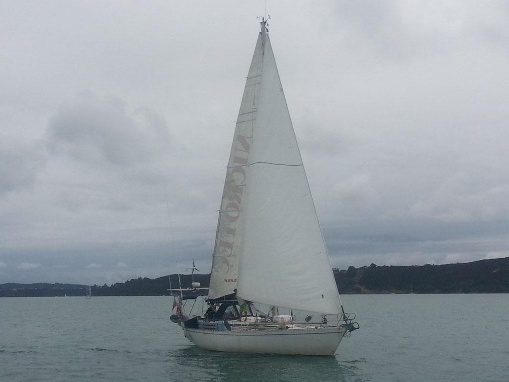 El Caps Tres navegando en Tamaki Strait, vela a tope