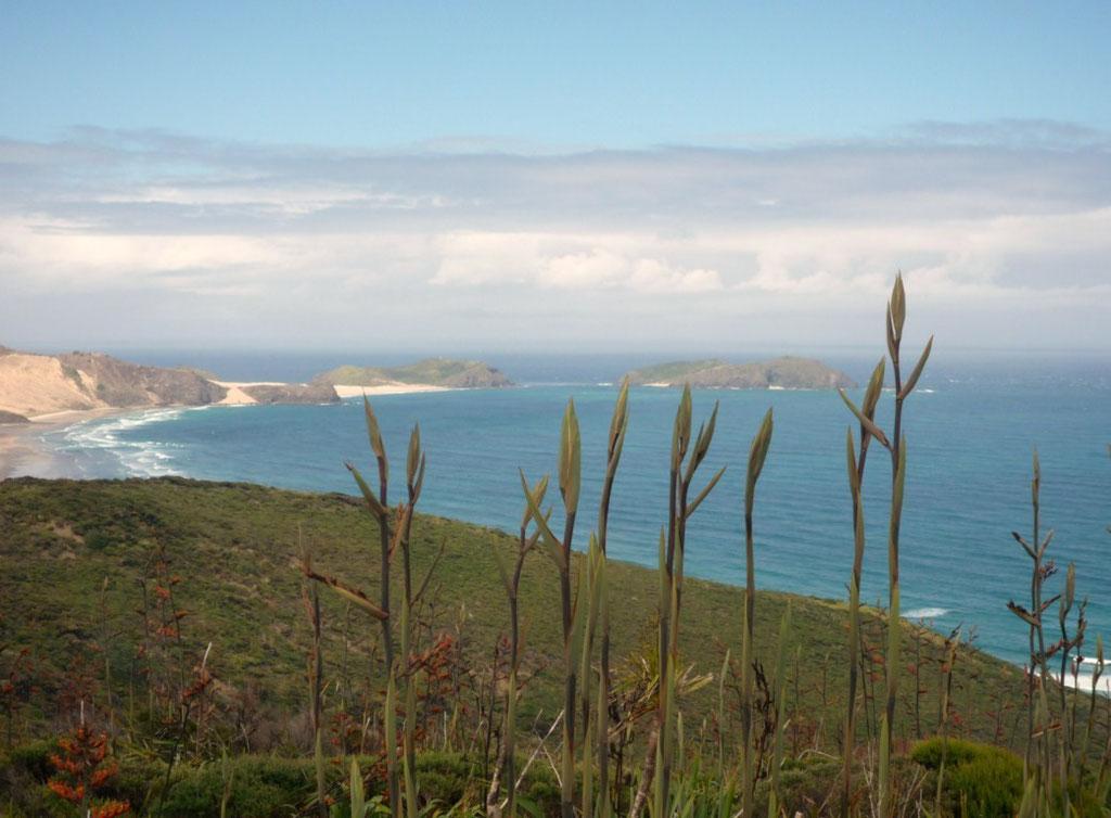 Cap Reinga, al norte de Nueva Zelanda