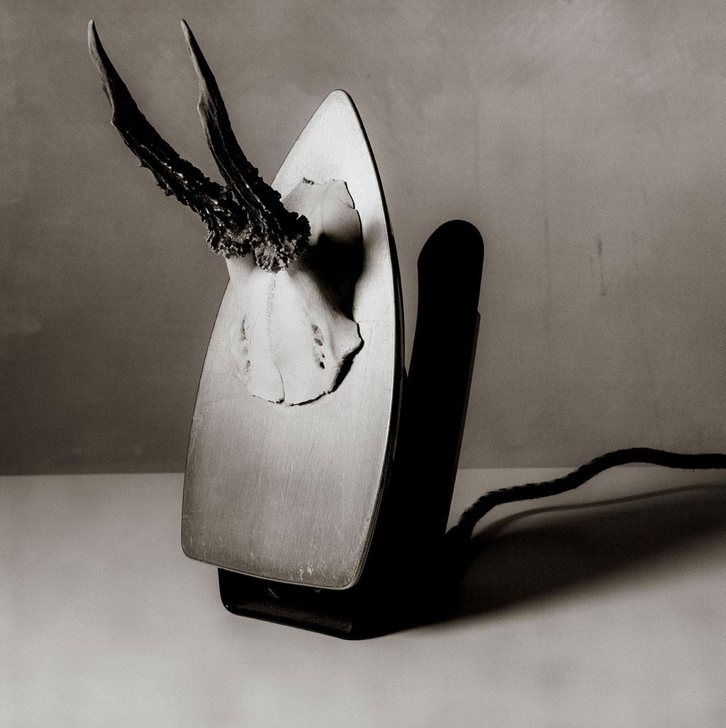 Man Reh, 2002