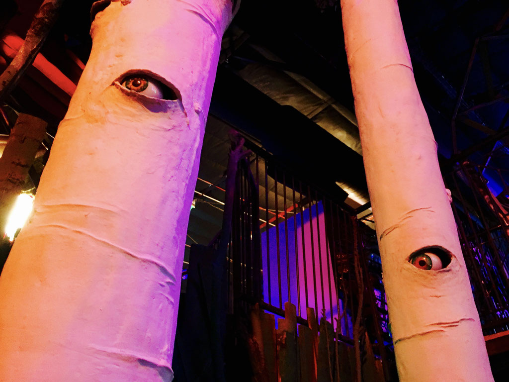 trees with eyes meow wolf
