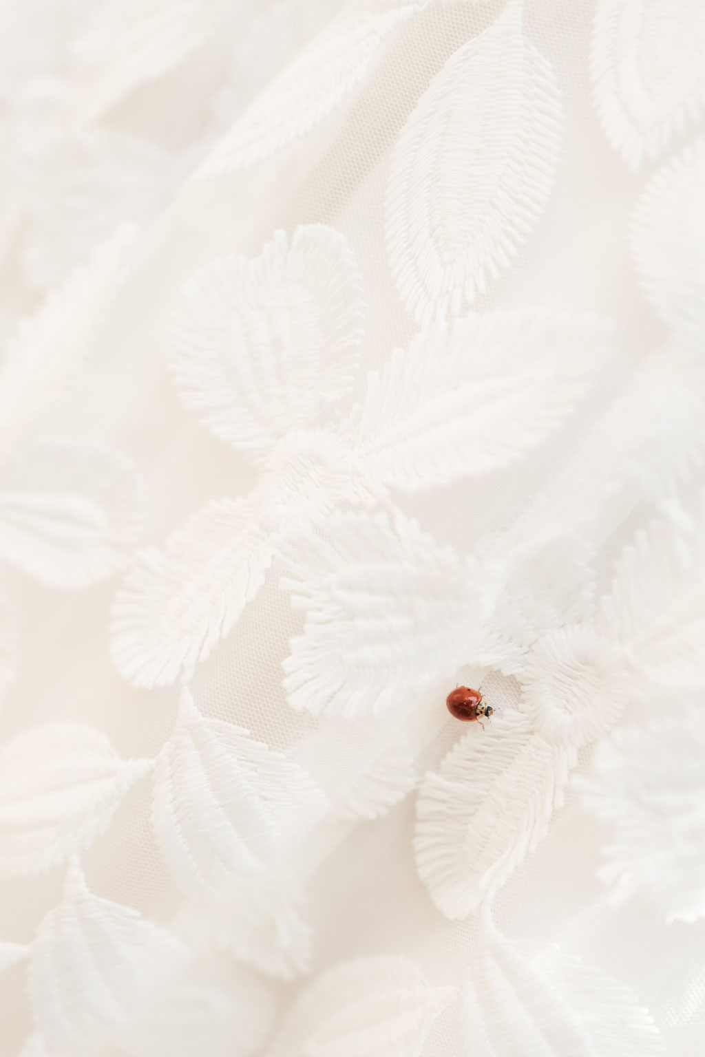 Hochzeitsfotografin Idstein, Hochzeitskleid, Glückskäfer, Marienkäfer, Details