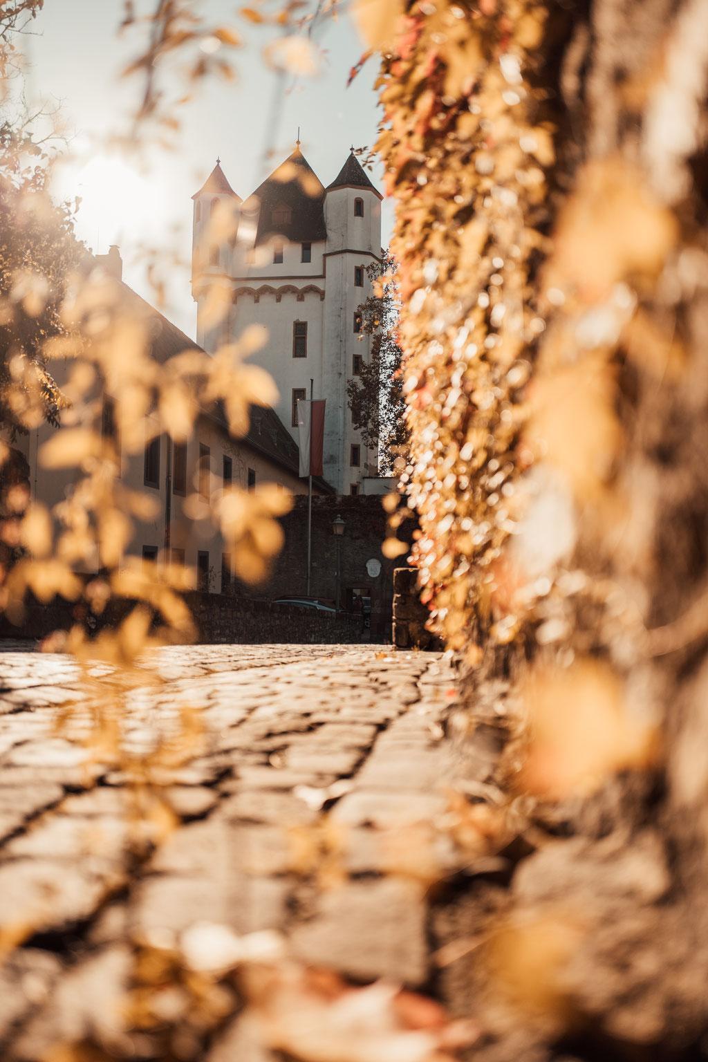 Hochzeitsfotografin Eltville, kurfürstliche Burg