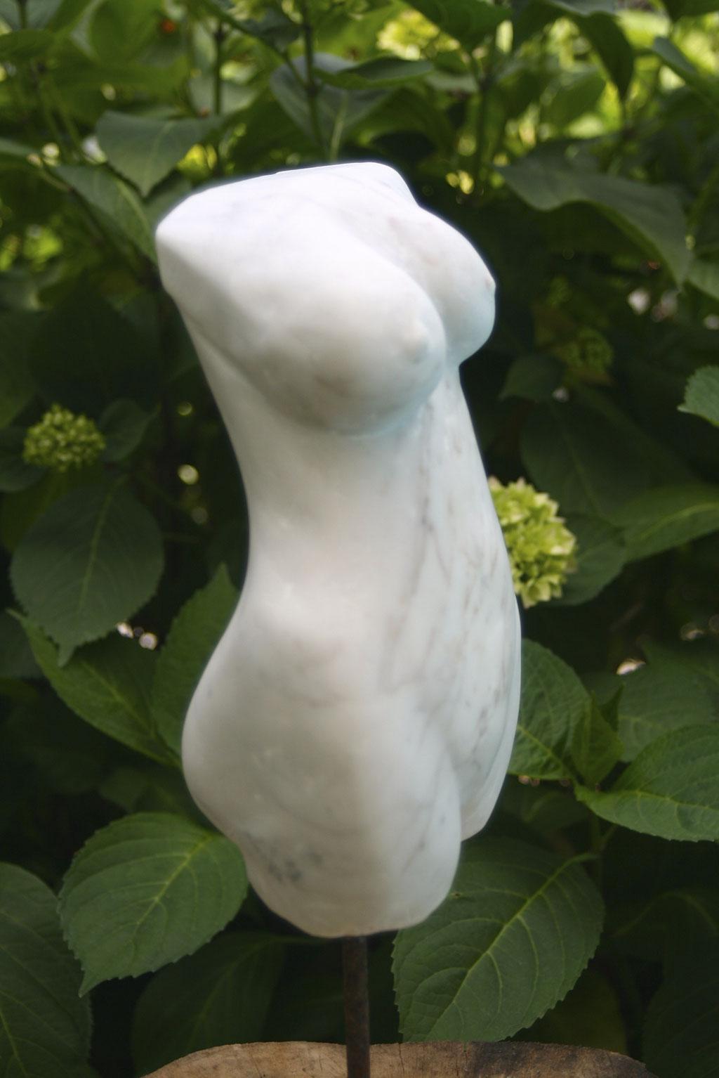Torso    Marmor  2014   30x10x8 cm