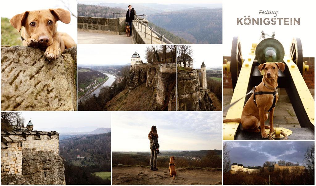 Festung Lichtenstein