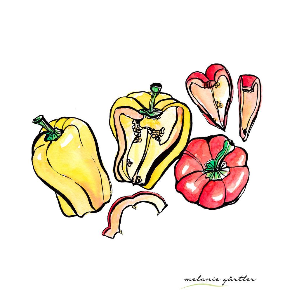 Foodillustration Watercolor Aquarell - Paprika