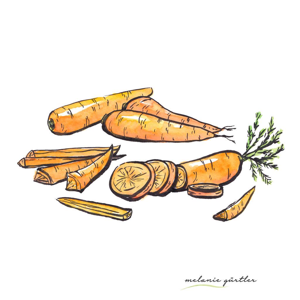 Foodillustration Watercolor Aquarell - Karotten Möhren