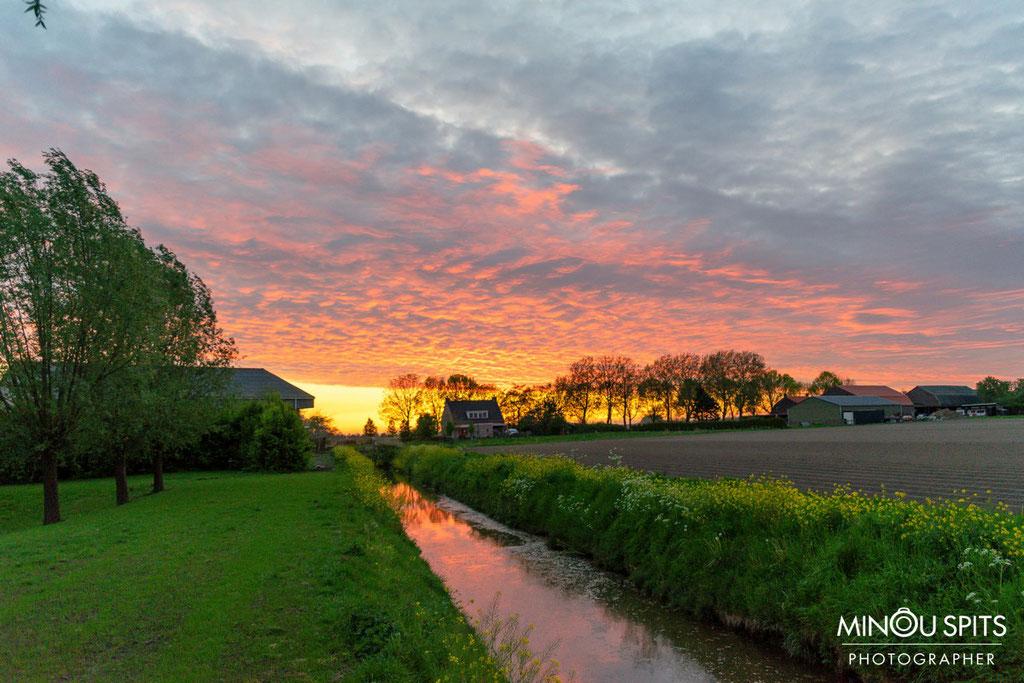 Ondergaande zon in Brabant