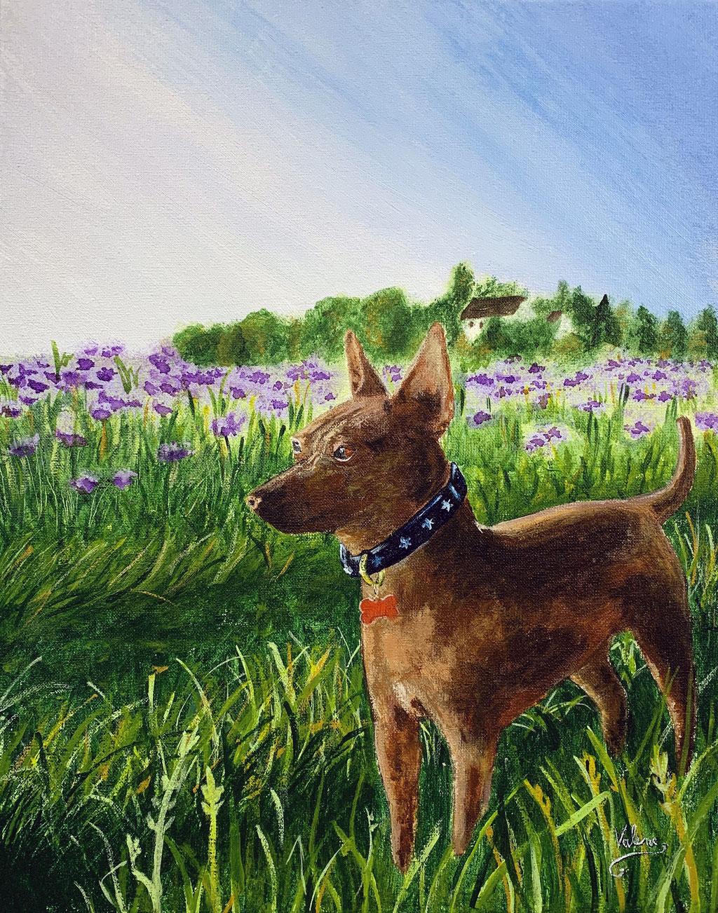Hond in bloemenveld: Acrylverf op doek (2021)