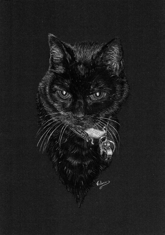 Dierenportret lapjeskat: Wit pastelpotlood en houtskool op zwart papier (2016)