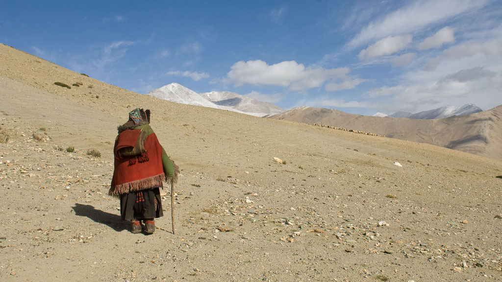 Alte Nomadenfrau beim Lagerumzug