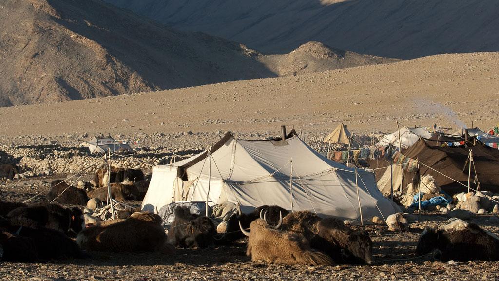 Nomadenlager in Zara