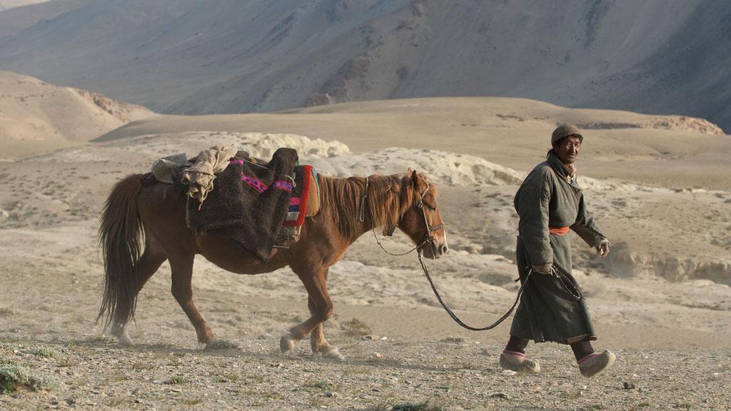 Nomade mit Pferd in Ladakh