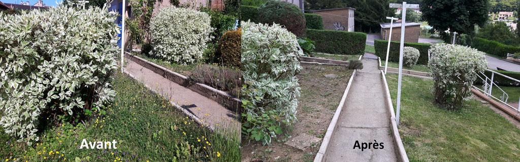 Travaux de jardinage pour redonner vie à ces espaces verts.