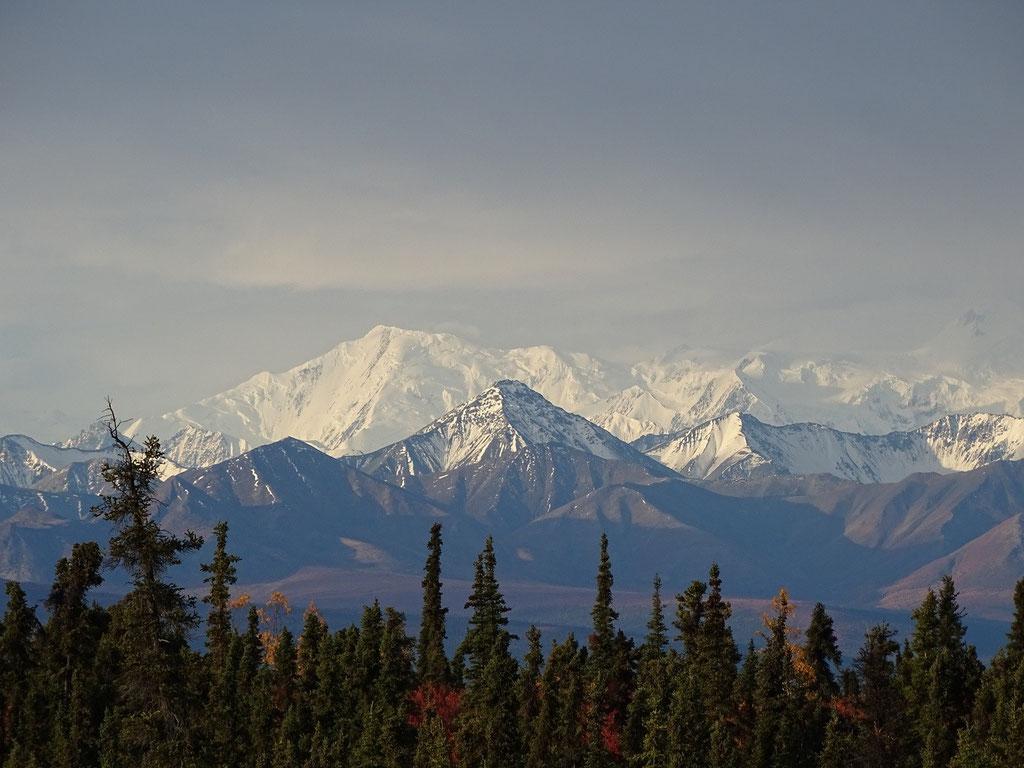 Gipfel der Alaska Range