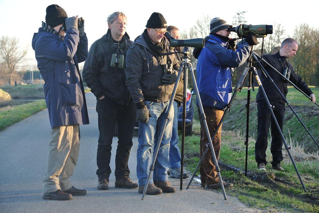 Enkele vogelaars uit Katwijk waren ook op de Roodhalsganzen afgekomen.