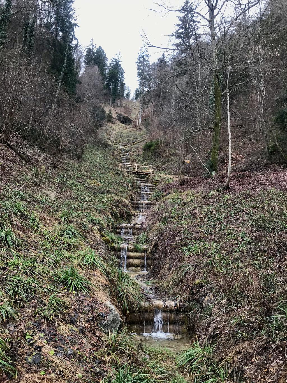 Hohensteinweg
