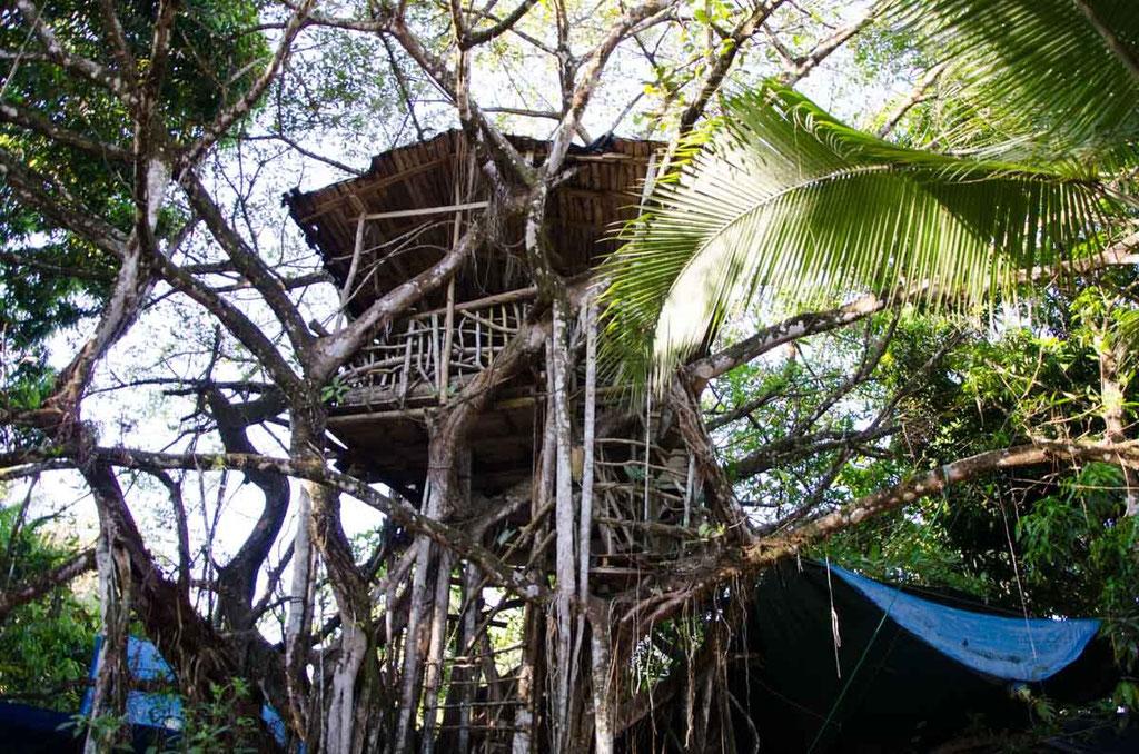 Hier gab es ein riesiges Baumhaus