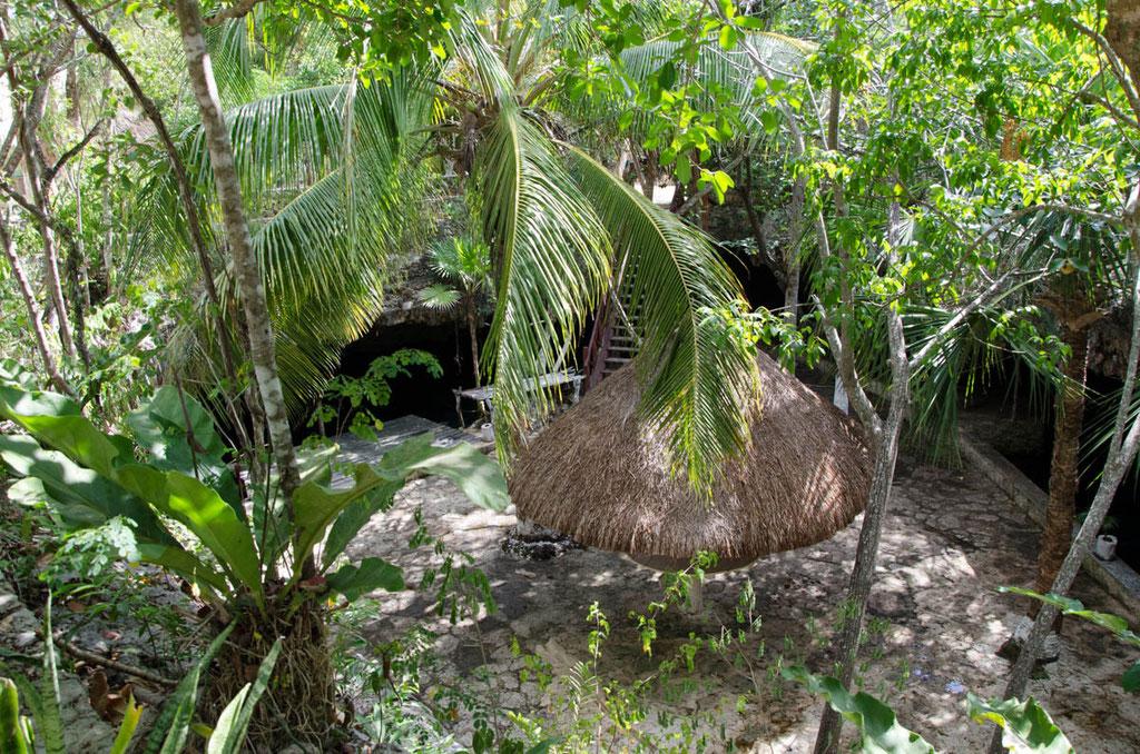 Blick in die Cenote Dos Palmas