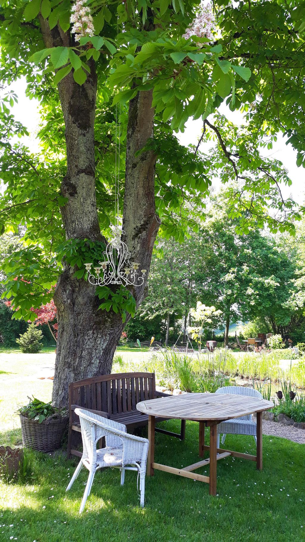 05.05. Spaziergang durch den Garten