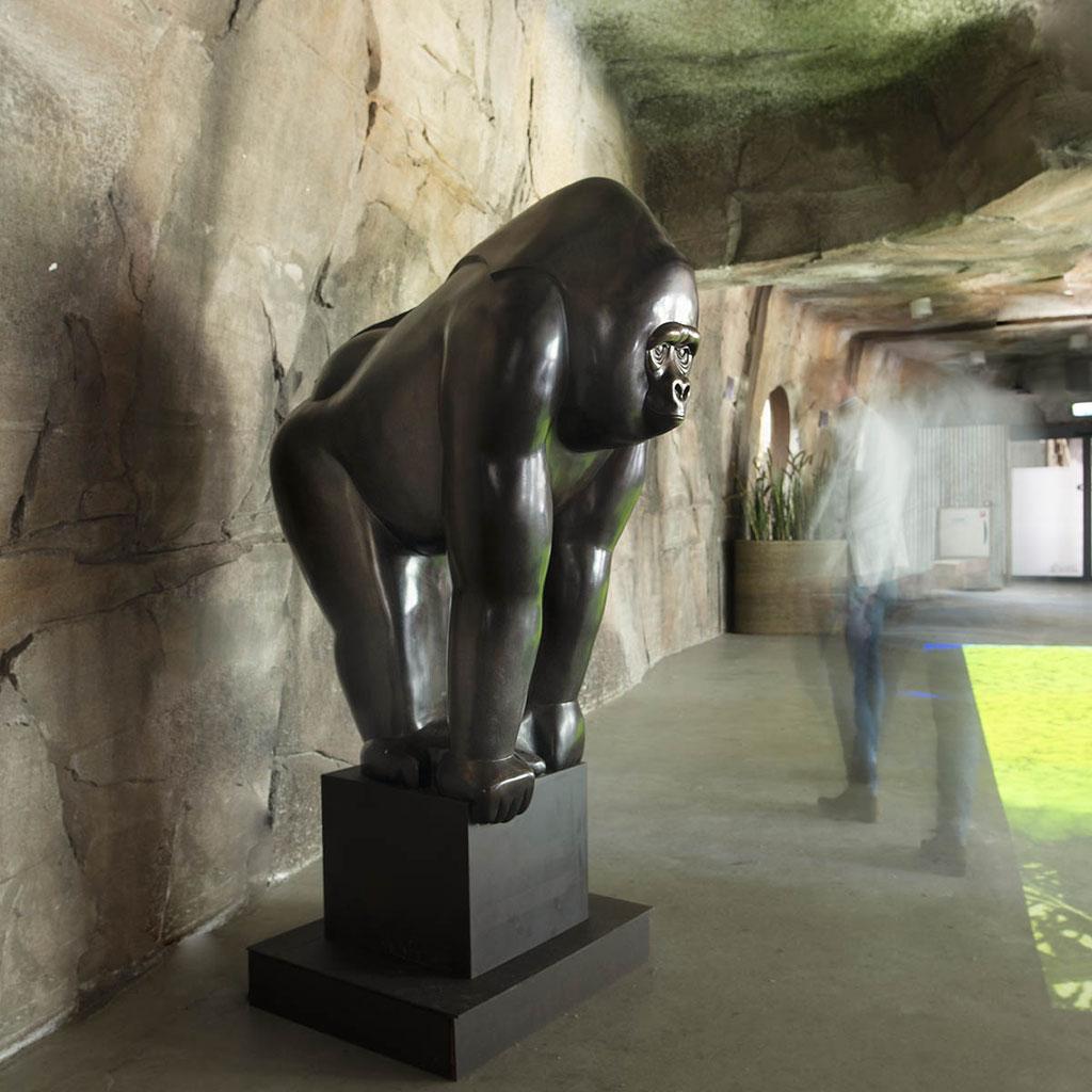Bronzen Gorilla door Frans van Straaten