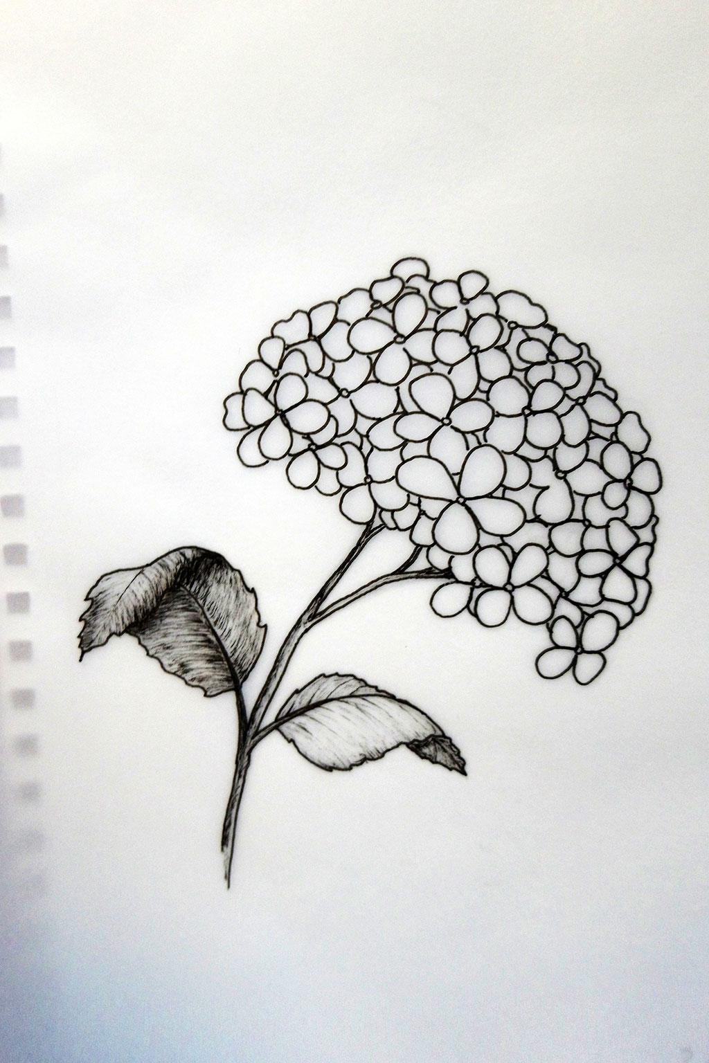 Tinte auf Transparentpapier - Illustration in Arbeit