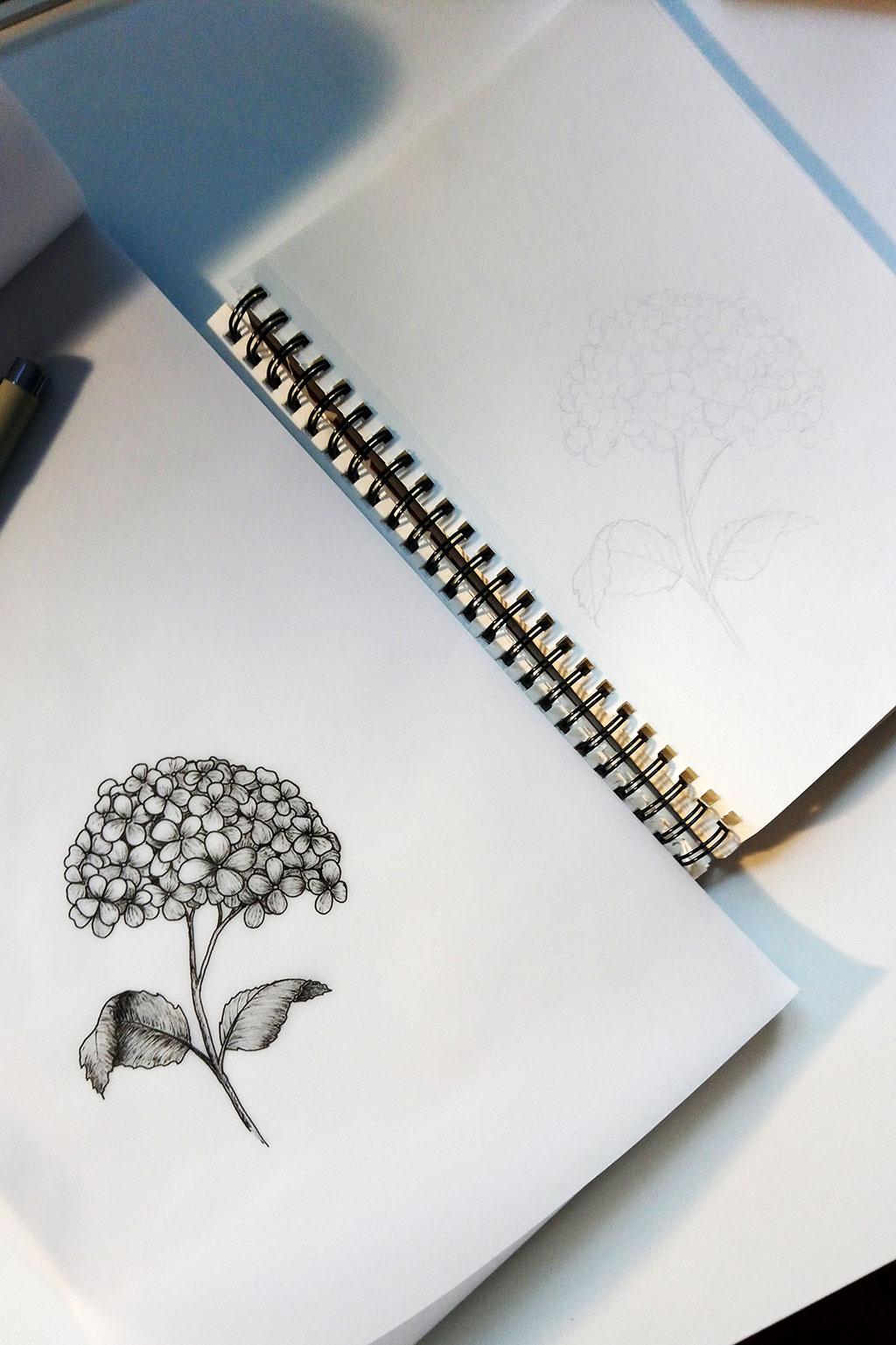 fertige Illustration und Bleistift-Skizze