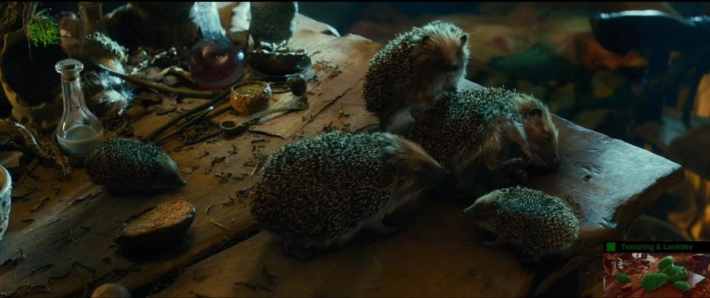Texturing & Lookdev Hedgehogs