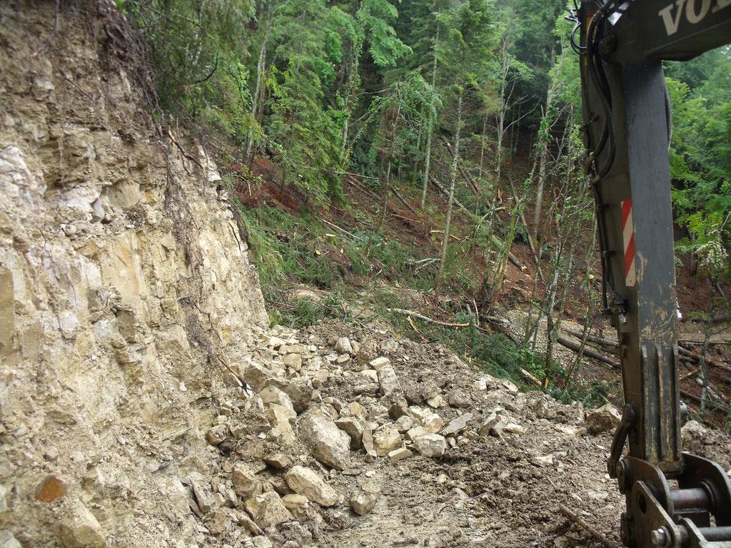 Création d'une piste forestière pour débardage