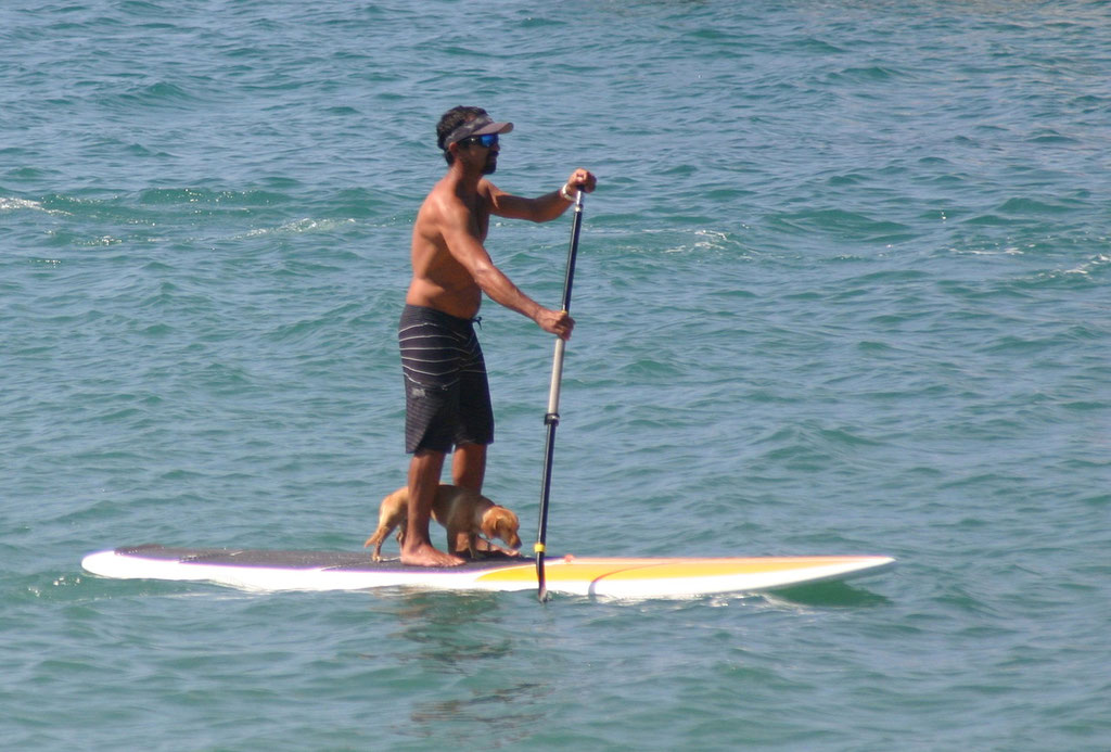 SUP on rincon's Caribbean Coast