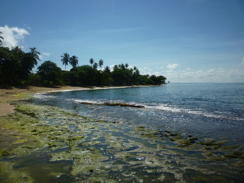 Steps Beach and the Tres Palmas Marine Reserve