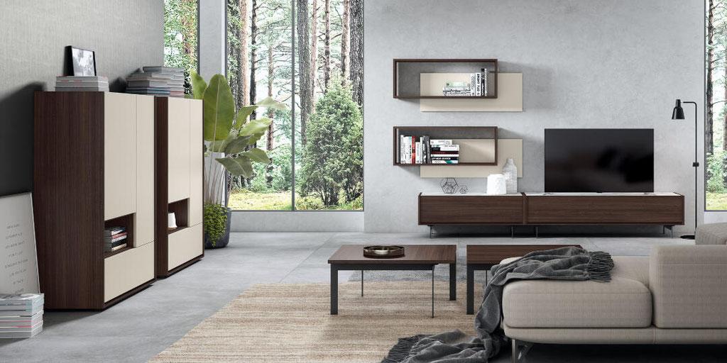 mueble y salon 154N