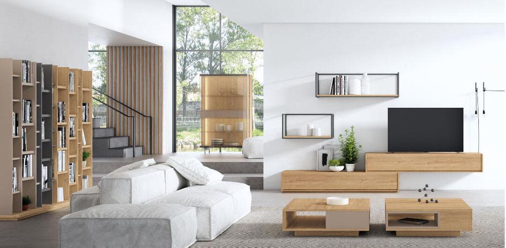 mueble bajo salon 154N