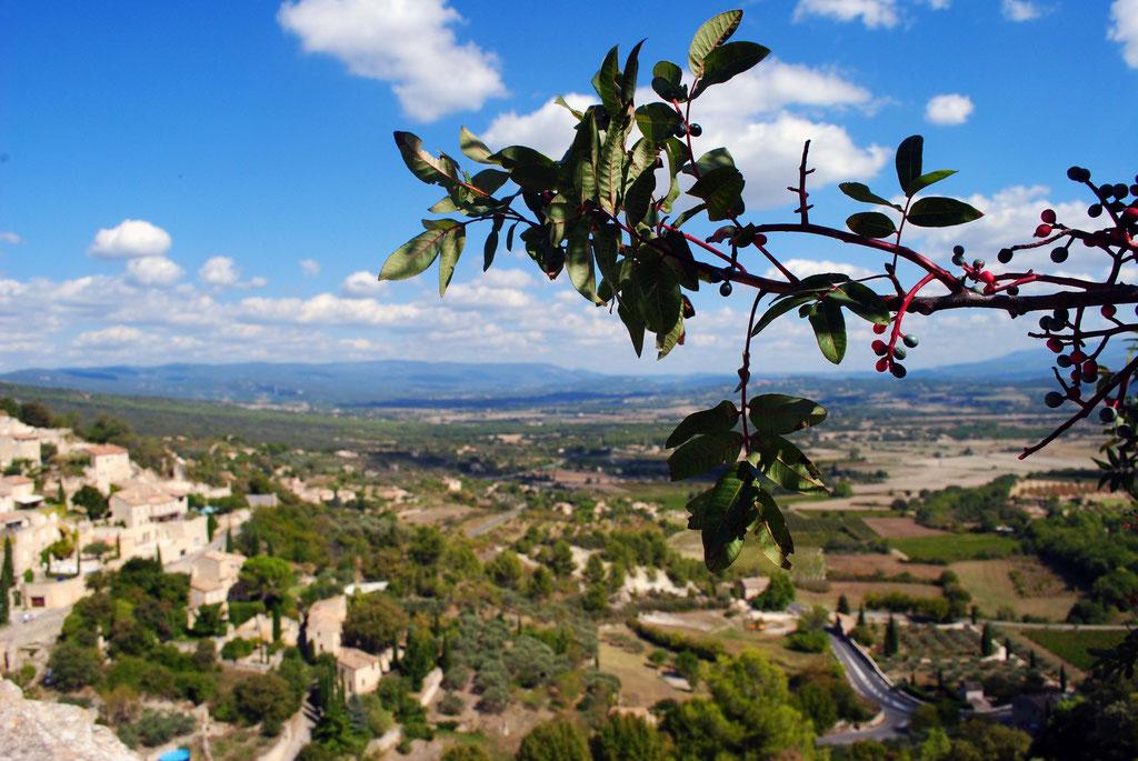 Gordes, Provence-  September 2014