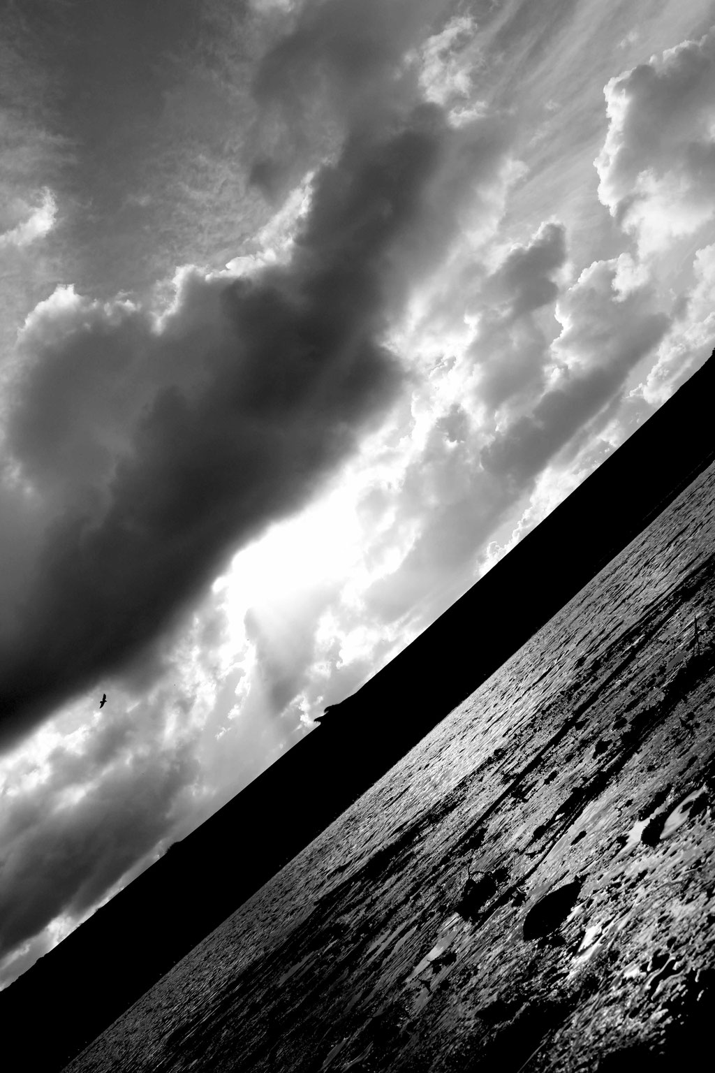 Horizon experiments in Newquay