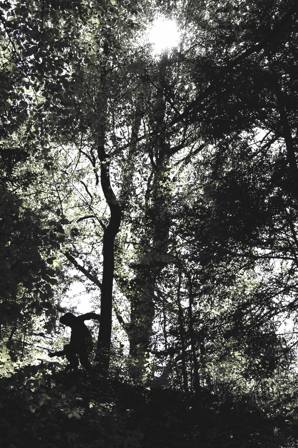 The frontman of Tankus the Henge, Jaz Delorean, disappears into the wilderness in St Gallen, Switzerland. May 2016