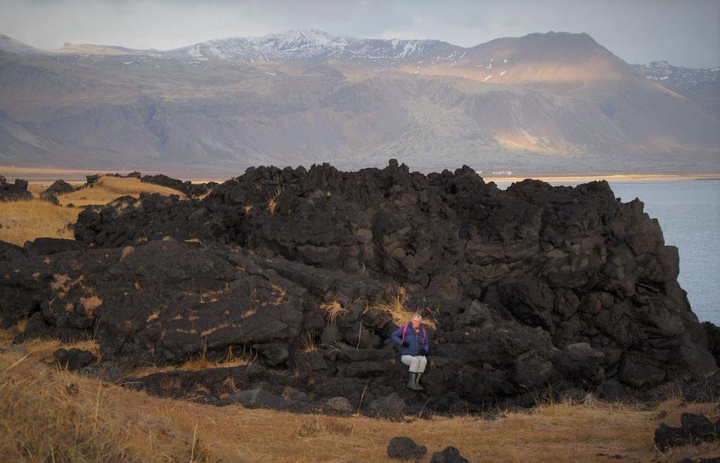 Ruige basaltformaties bij Arnarstapi