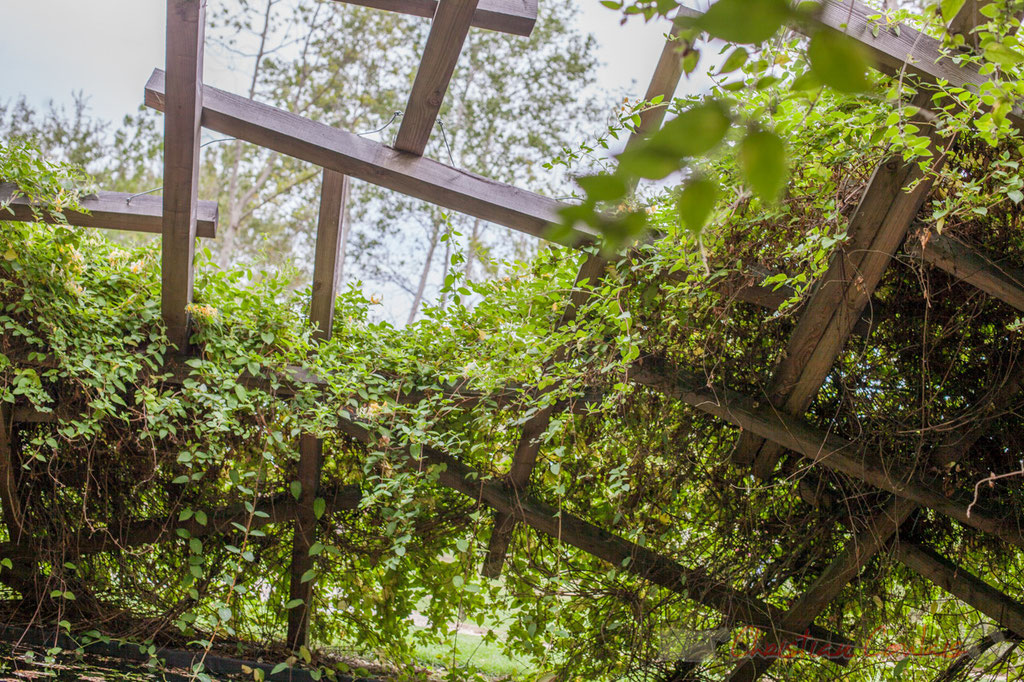 « Le jardin des nuées qui s'attardent »; Wang Shu, paysagiste; Prés du Goualoup; Domaine de Chaumont-sur-Loire. Mercredi 26 août 2015. Photographie © Christian Coulais